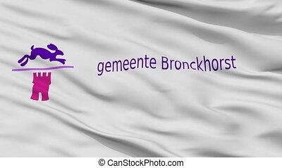 Closeup Bronckhorst city flag, Netherlands - Bronckhorst...