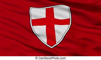 Closeup Buja okomita city flag, Croatia - Buja okomita...