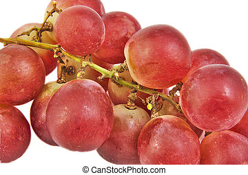 Closeup bunch of red grapes on white background.