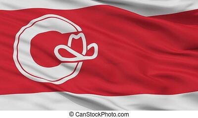 Closeup Calgary Alberta city flag, Canada - Calgary Alberta...