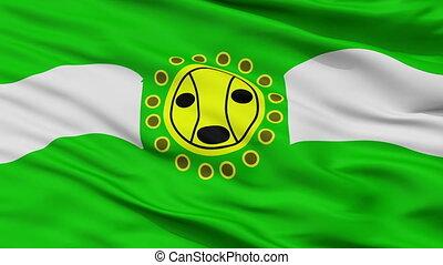 Closeup Camuy city flag, Puerto Rico - Camuy closeup flag,...