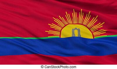 Closeup Carabobo State city flag, Venezuela - Carabobo State...