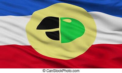 Closeup Carepa city flag, Colombia - Carepa closeup flag,...