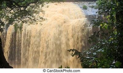 Closeup Cascade of Wide Foamy Waterfall in Forest