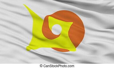 Closeup Chetumal city flag, Mexico - Chetumal closeup flag,...