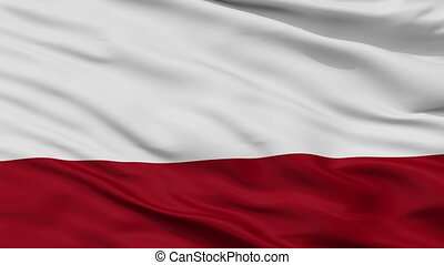 Closeup Choachi city flag, Colombia - Choachi closeup flag,...