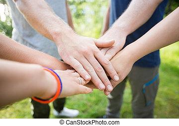 closeup, de, amigos, empilhando mãos, em, floresta