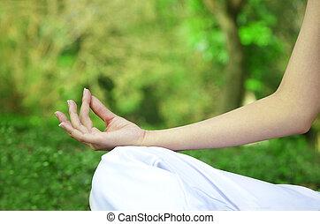 closeup, de, mulher, mãos, em, ioga posa