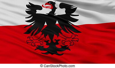 Closeup Deventer city flag, Netherlands - Deventer closeup...