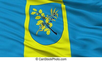 Closeup Dziarzynsk city flag, Belarus
