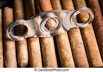 closeup, fooi, holle weg, sigaar, van