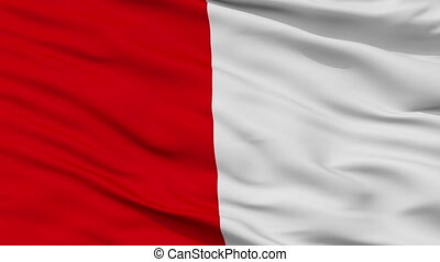 Closeup Frejus city flag, France - Frejus closeup flag, city...