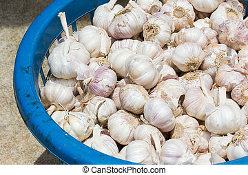 closeup garlic in dirty blue plastic container.