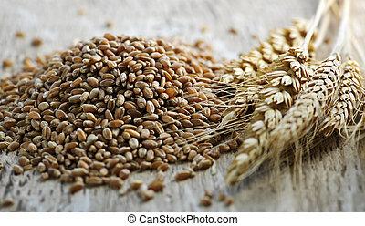 closeup, grano, frumento, intero, noccioli