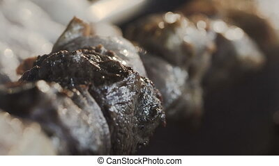 Closeup. Grilled kebab cooking on metal skewer. Roasted meat cooked at barbecue. Grill on charcoal and flame, picnic