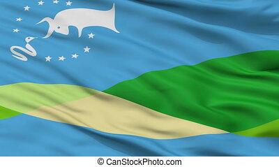 Closeup Gualeguaychu city flag, Argentina