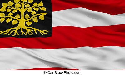 Closeup Hertogenbosch city flag, Netherlands - Hertogenbosch...