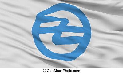 Closeup Hita city flag, prefecture Oita, Japan - Hita close...