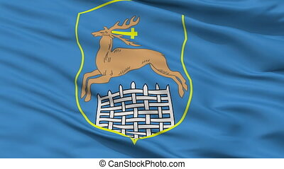 Closeup Hrodna city flag, Belarus - Hrodna closeup flag,...
