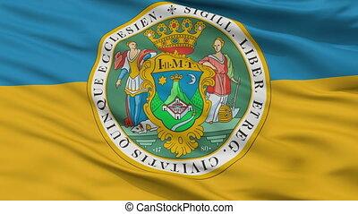 Closeup HUN Pecs city flag, Hungary - HUN Pecs closeup flag,...