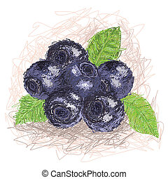 blueberry - closeup illustration of a fresh blueberry fruit.