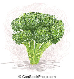 broccoli - closeup illustration of a fresh broccoli...