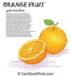 closeup illustration of a fresh orange fruit whole and half sliced.