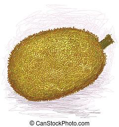 jackfruit - closeup illustration of a fresh ripe jackfruit.