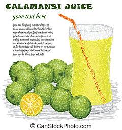 calamansi juice - closeup illustration of calamansi juice...