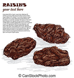 raisins - closeup illustration of dried raisins isolated in ...