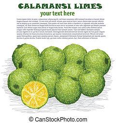 calamansi limes