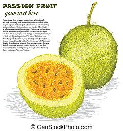 passion fruit - closeup illustration of fresh passion fruit...