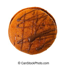 Closeup image of chocolate cookie isolated