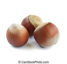 Closeup image of Hazelnuts Isolated on White Background