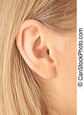 closeup, immagine, di, biondo, ragazza, orecchio