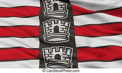 Closeup Joao Pessoa city flag, Brasil - Joao Pessoa closeup...