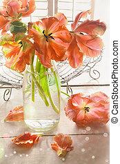 closeup, közül, színes, tulipánok, közel, ablak