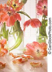 closeup, közül, tulipánok, közel, ablak