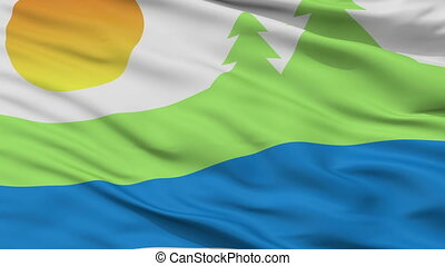 closeup , kawartha, λίμνες , πόλη , σημαία , καναδάs