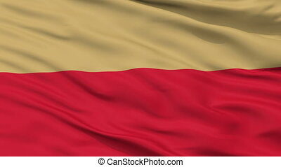 Closeup Leszno city flag, Poland - Leszno closeup flag, city...
