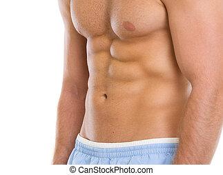 closeup, ligado, músculos, torso