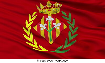 Closeup Lleida city flag, Spain - Lleida closeup flag, city...