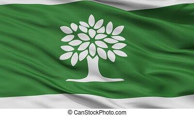 Closeup London Ontario city flag, Canada - London Ontario...