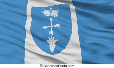 Closeup Luniniec city flag, Belarus - Luniniec closeup flag,...