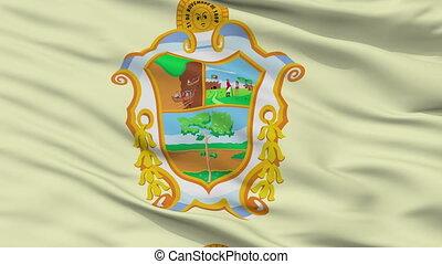 Closeup Manaus city flag, Brasil - Manaus closeup flag, city...