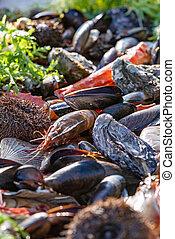 closeup mix seafood on a festive table. Selective focus