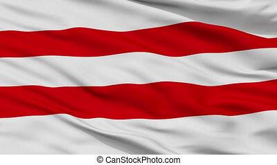 Closeup Moisakula city flag, Estonia - Moisakula closeup...