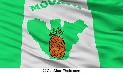 Closeup Moorea Maiao city flag, French Polynesia - Moorea...