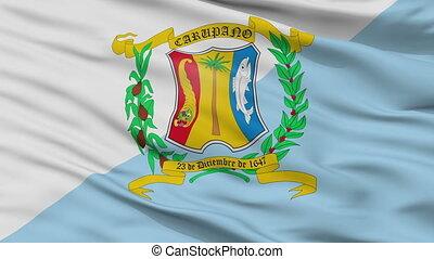Closeup Municipio Bermudez city flag, Venezuela - Municipio...