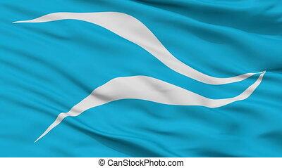 Closeup Neuquen city flag, Argentina